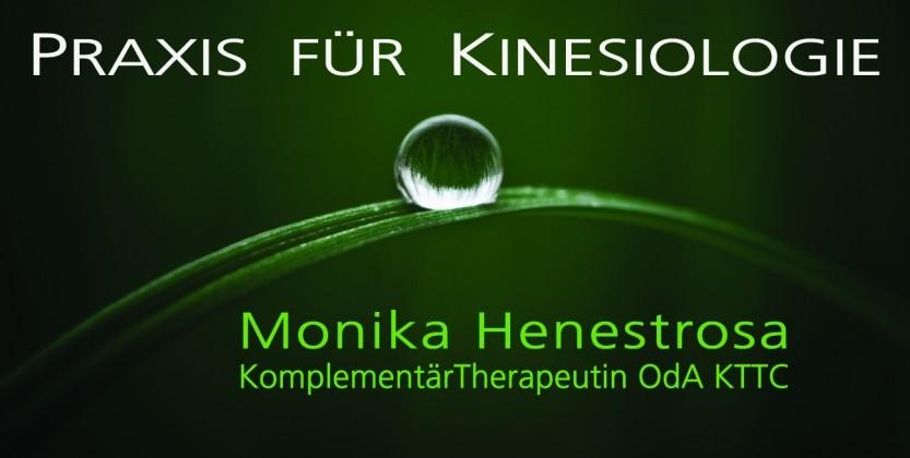 Kinesiologie Bern Bolligen-Praxis