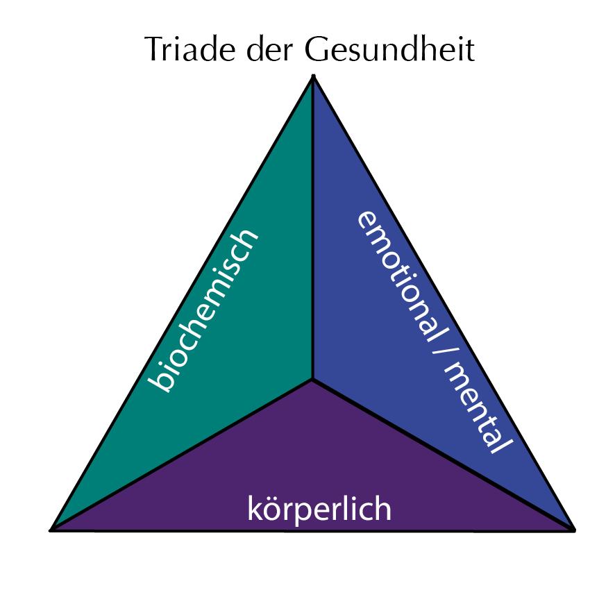 Kinesiologie-Triade der Gesundheit-Bewusstsein für Zusammenhänge