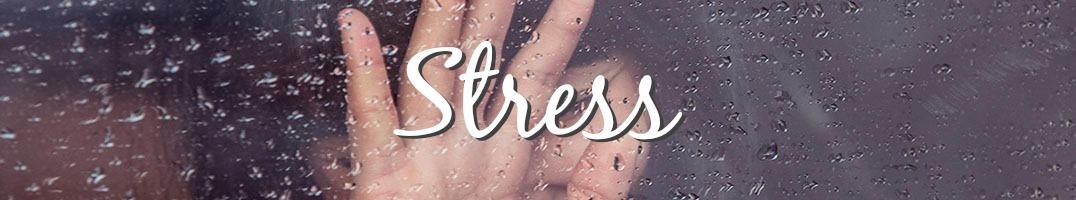 Stress-Kinesiologie Bern Bolligen